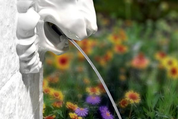 gardenfountain
